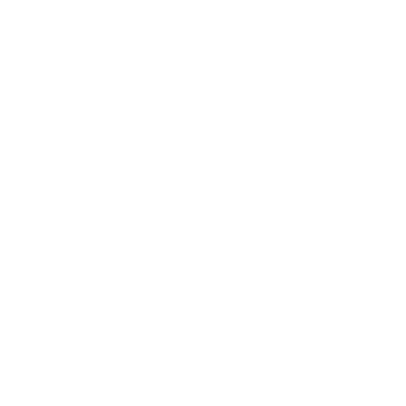 a graphical icon of the earth with a swoosh arrow circling it signifying global communications